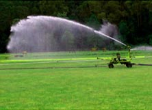 Liquid Organic Fertiliser