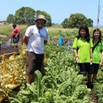 Wormtec Teams Up With Gold Coast Permiculture for Organic Worm Extract Product Development